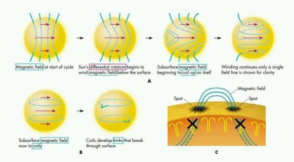 sunmagneticfield